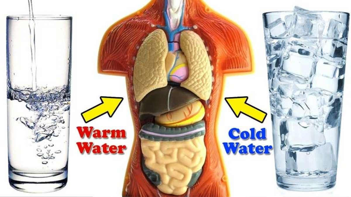 喝热水和冷水哪个对身体好?